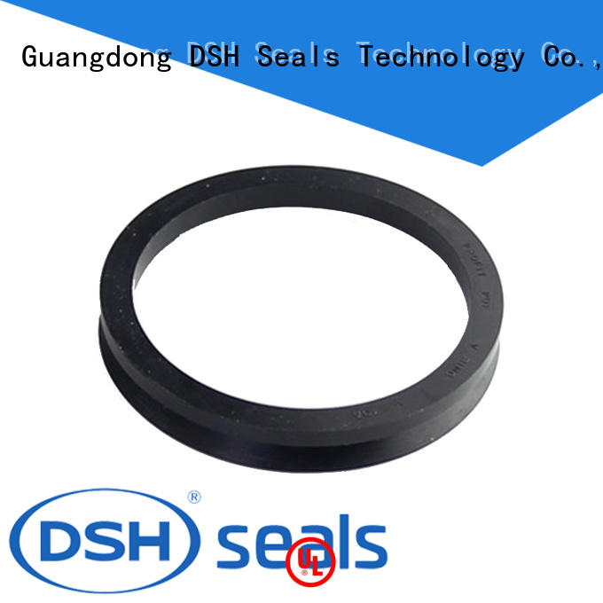 high pressure rotary seal drs for guide ring DSH