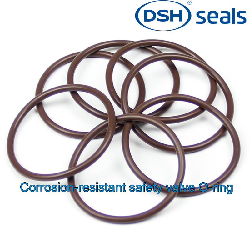 DSH-A Corrosion-resistant Safety Valve O-ring
