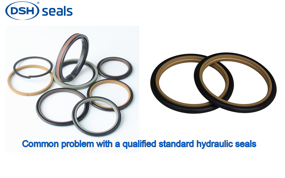 DSH-Common Problem With A Qualified Standard Hydraulic Seals