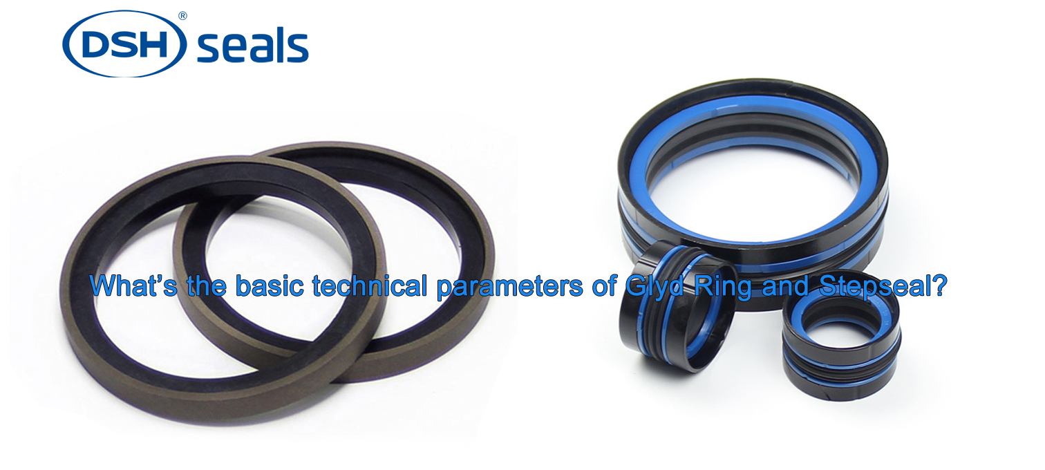 DSH-What's The Basic Technical Parameters Of Glyd Ring And Stepseal