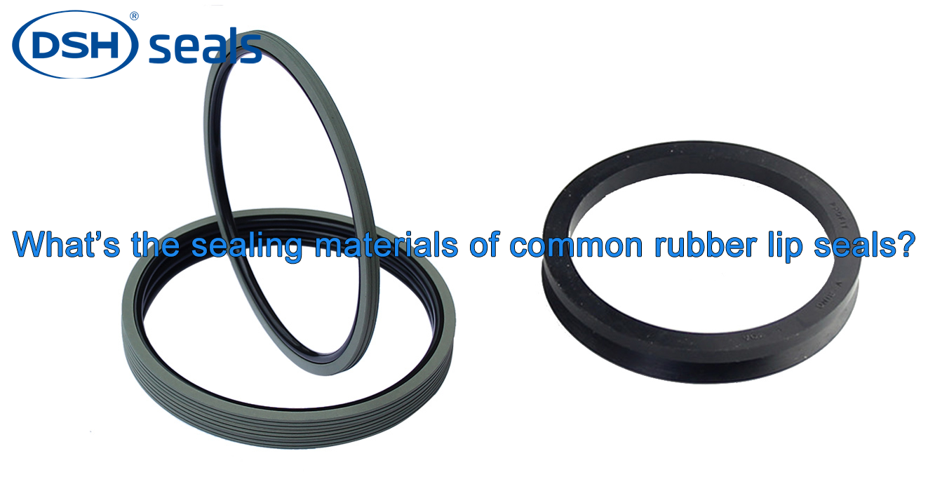 DSH-Whats The Sealing Materials Of Common Rubber Lip Seals