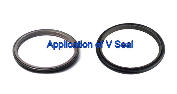 DSH-Applicationof V Seal